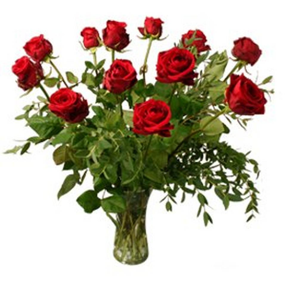 Image 1 of 1 of 12 red roses