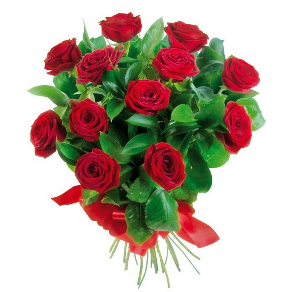Image 1 of 1 of Eros flowers
