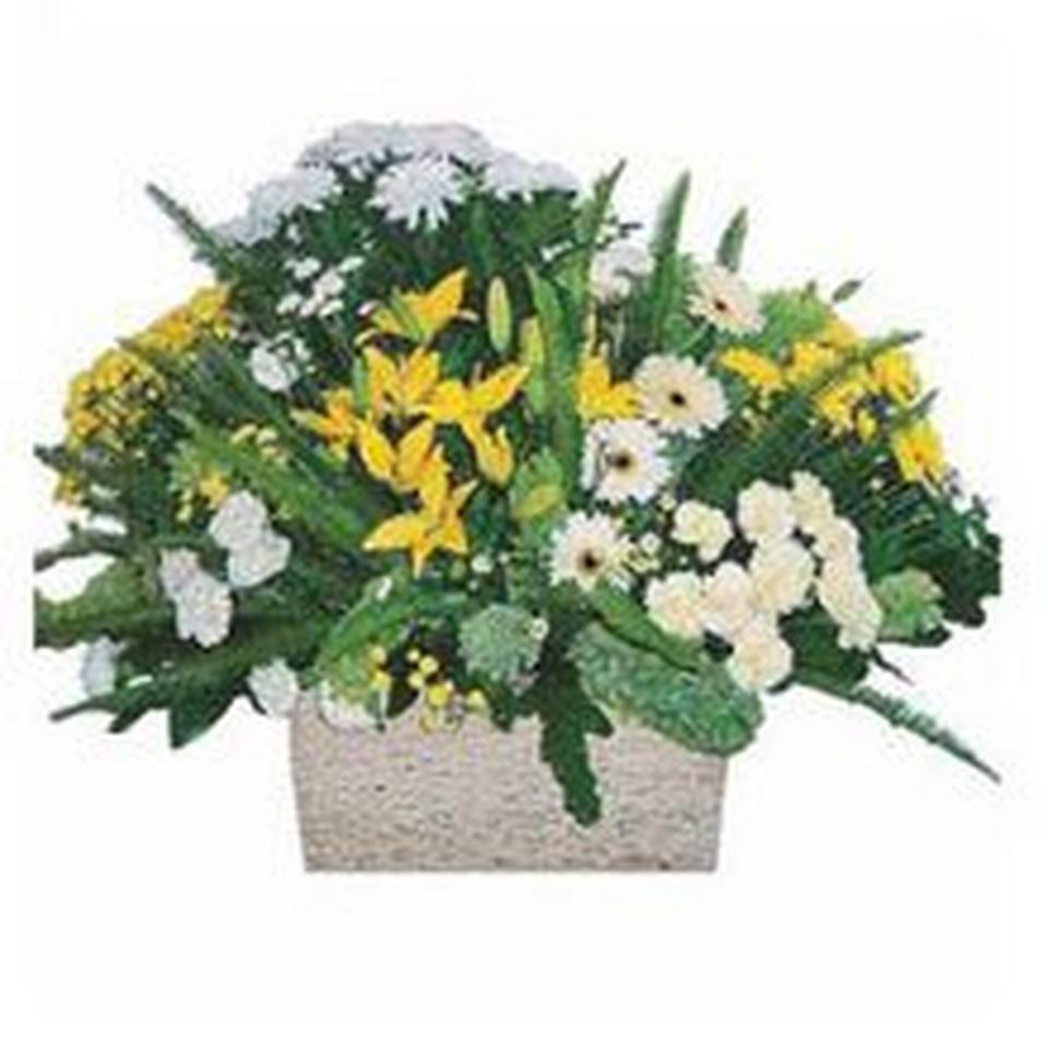 Image 1 of 1 of Arrangement of cut flowers