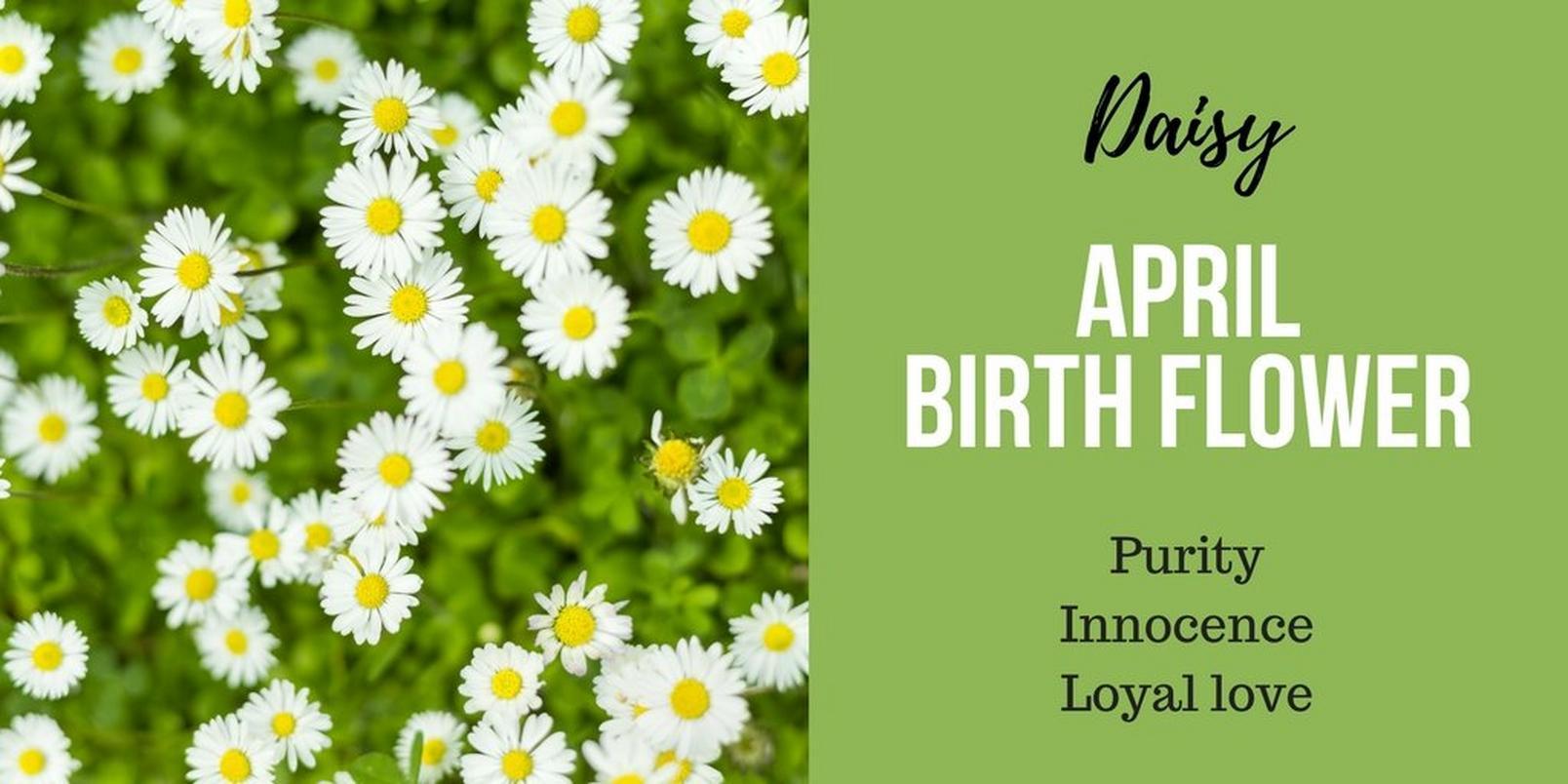 April-birth-flower
