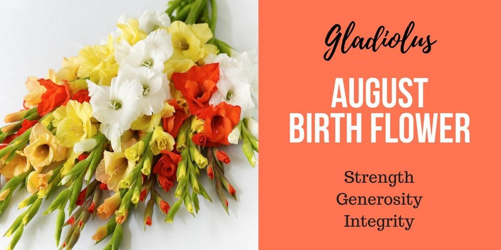 August-birth-flowerff