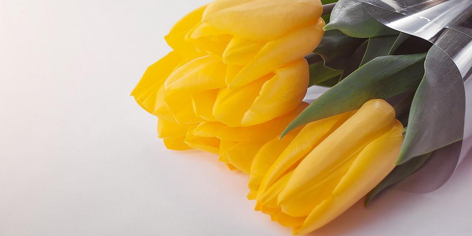 Canva - Bouquet of Yellow Tulips (1)