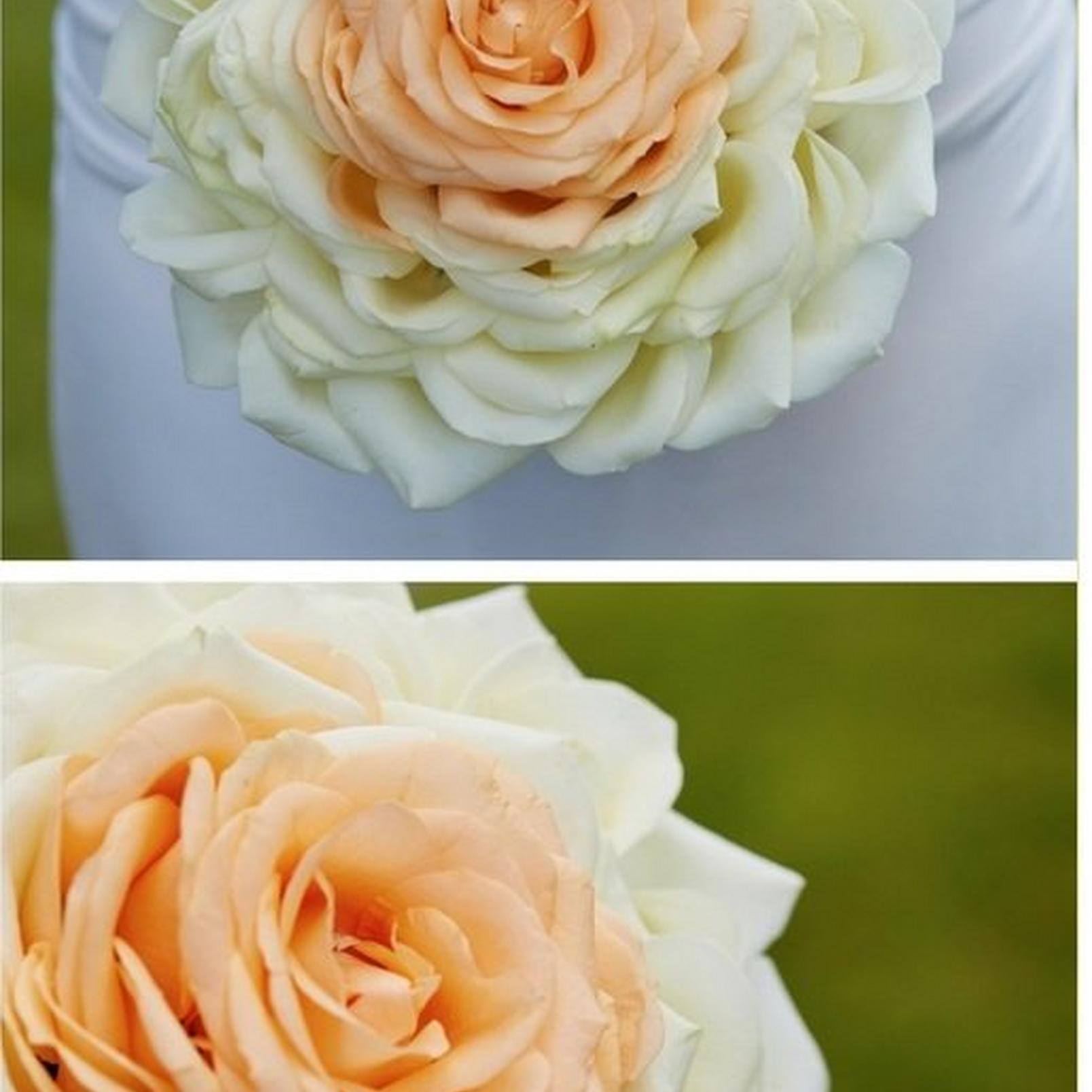 Composite-flower-bouquet2
