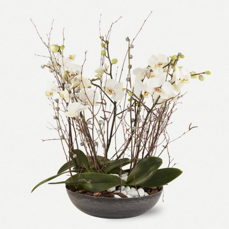 Image 1 of 1 of Dish with orchids