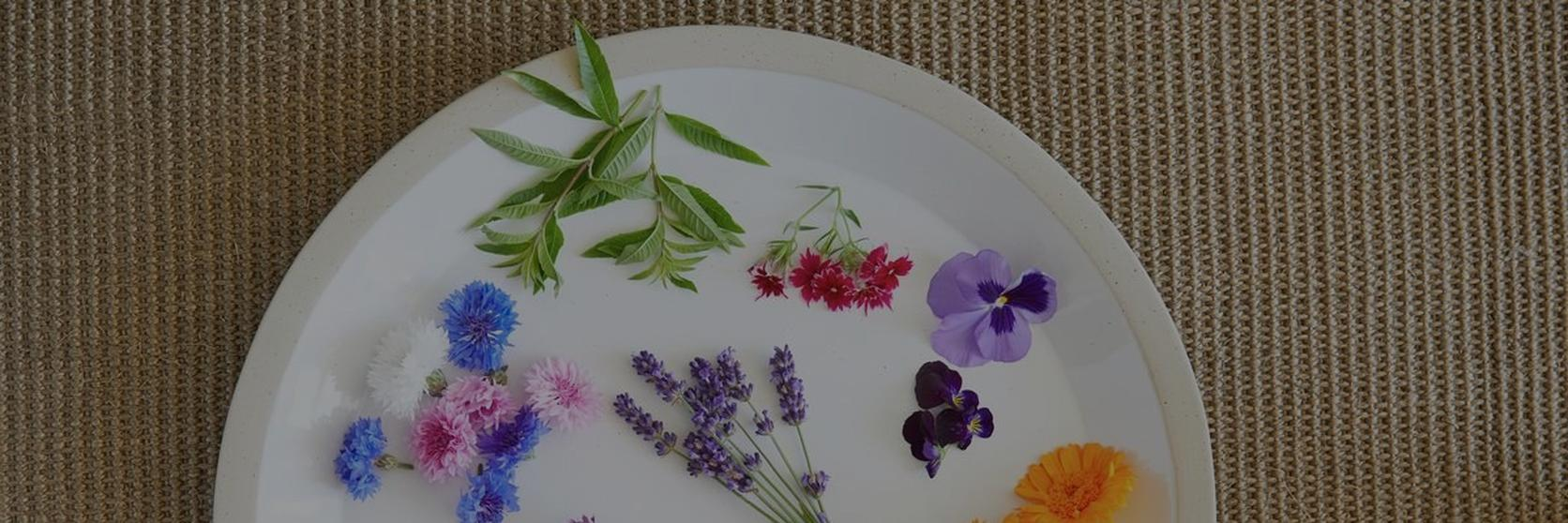 Edible-flowers-guide