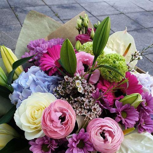 Jazlissa Flowers (Clonee Village)
