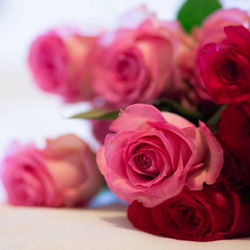 Nine-roses