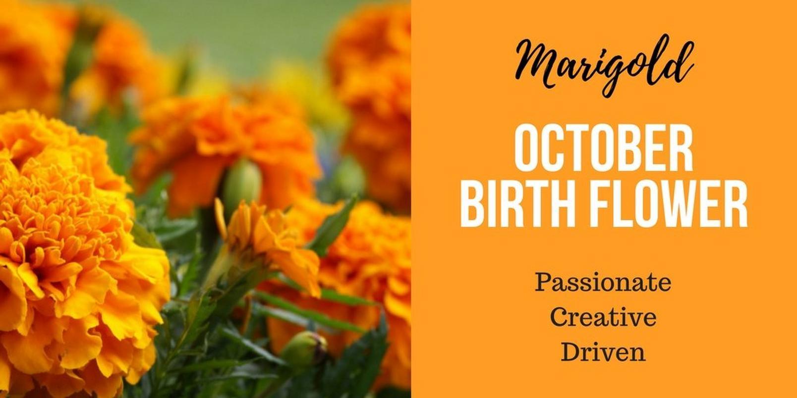 October-birth-flowerff