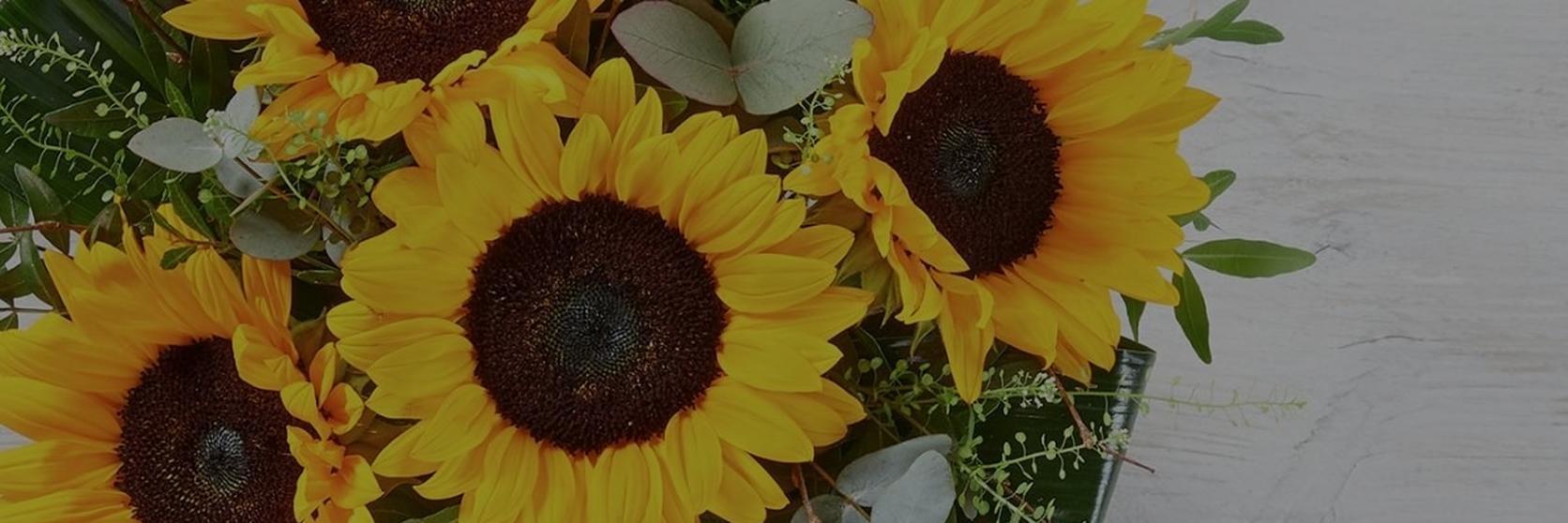 Untitled-design-4-sunflowers