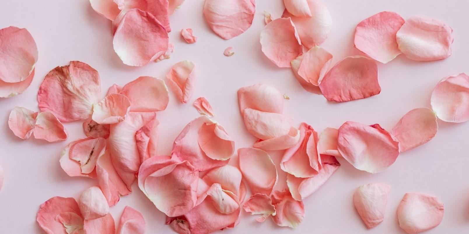 how-to-dry-flowers-3
