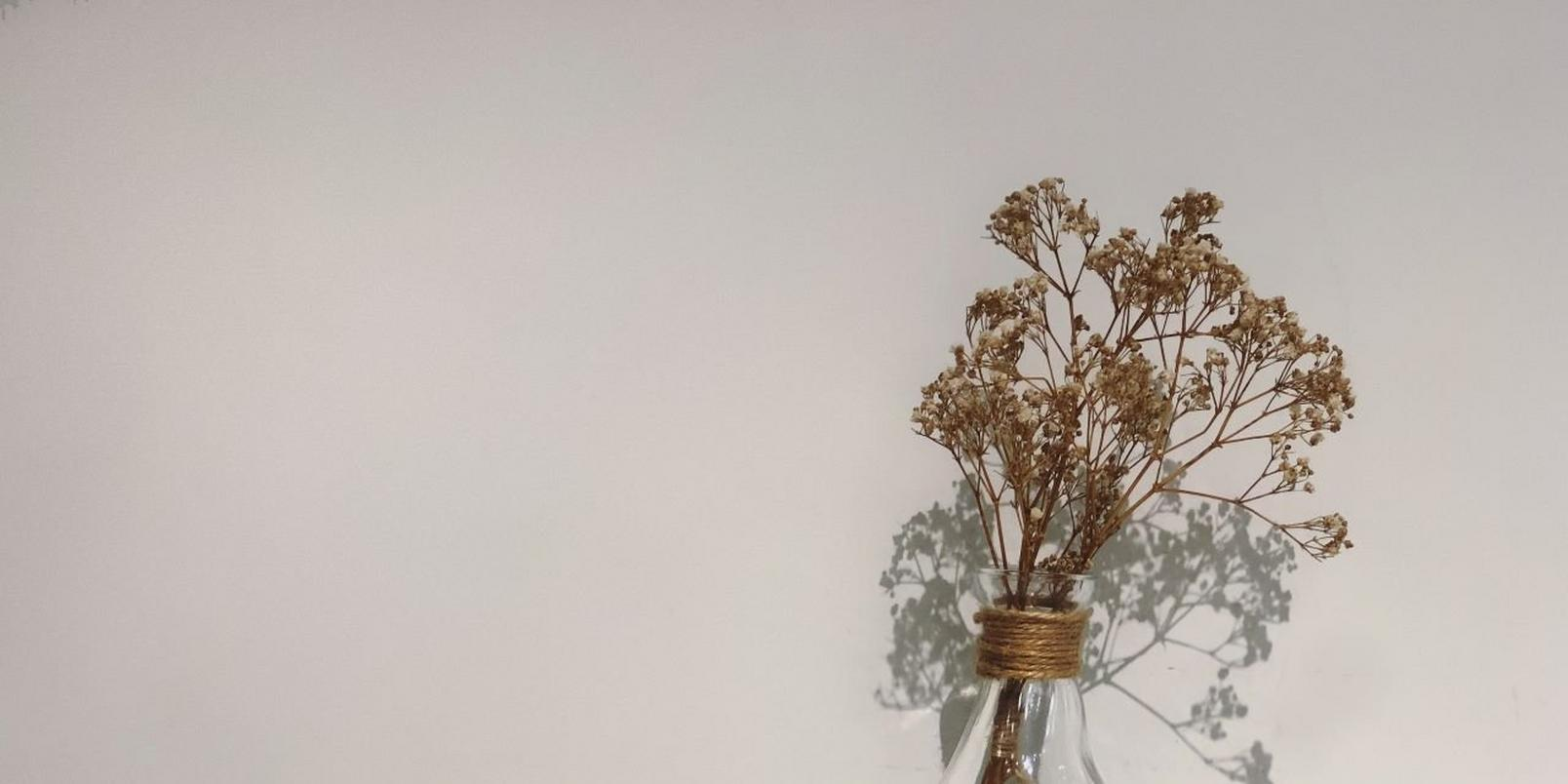 how-to-dry-flowers-4