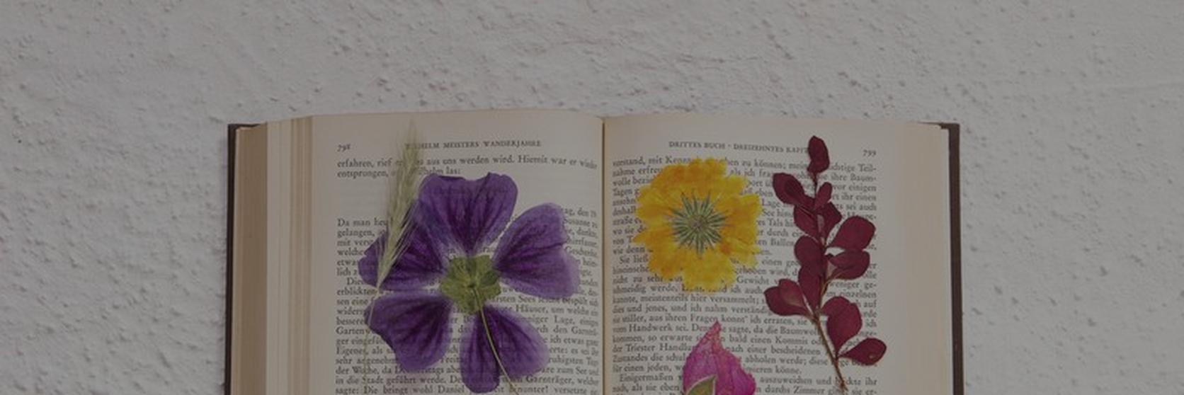 how-to-press-flower-1