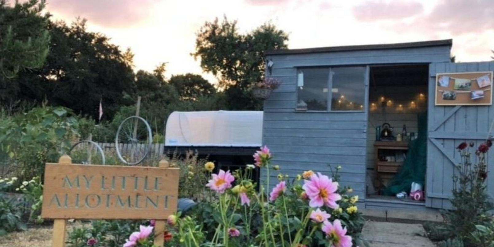 mindfloral-gardening-therapy-kirsty-ward-3