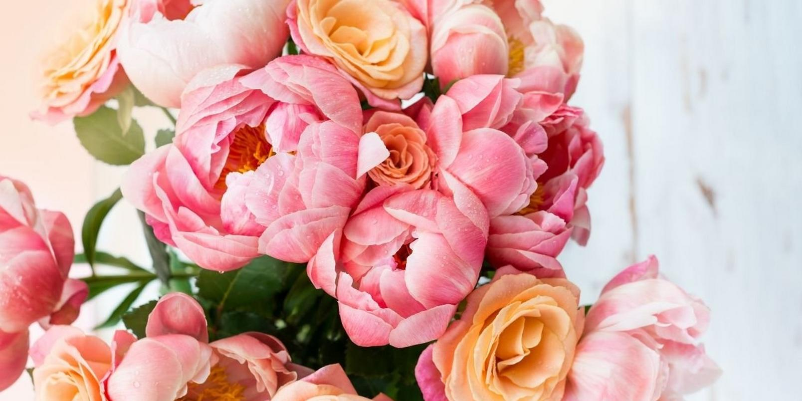 peonies-facts-that-may-surprise-you-3