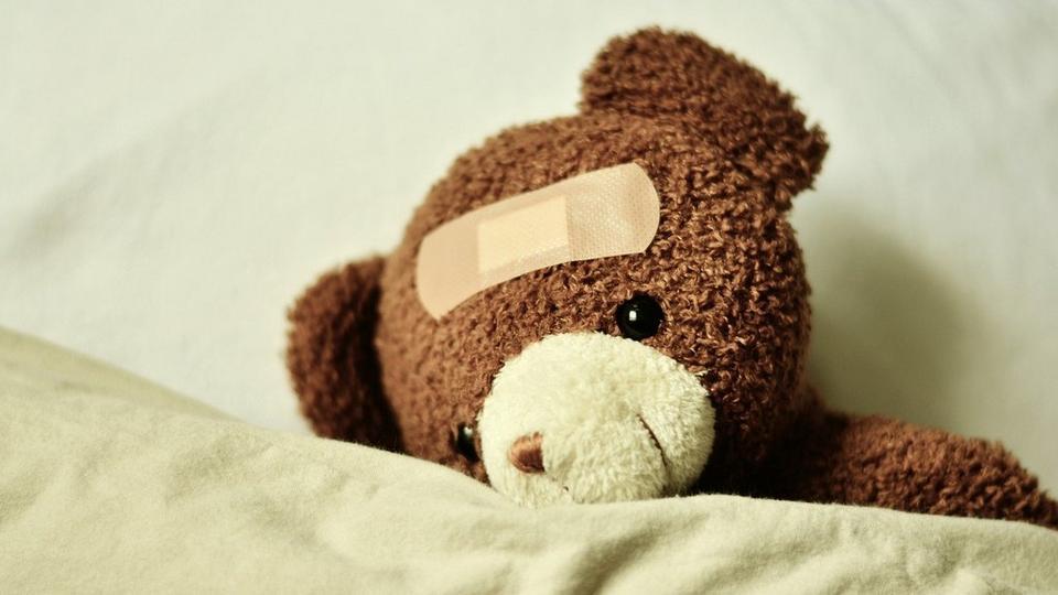 teddy-3183563_1920
